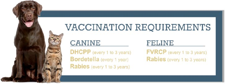 vaccine-requirements
