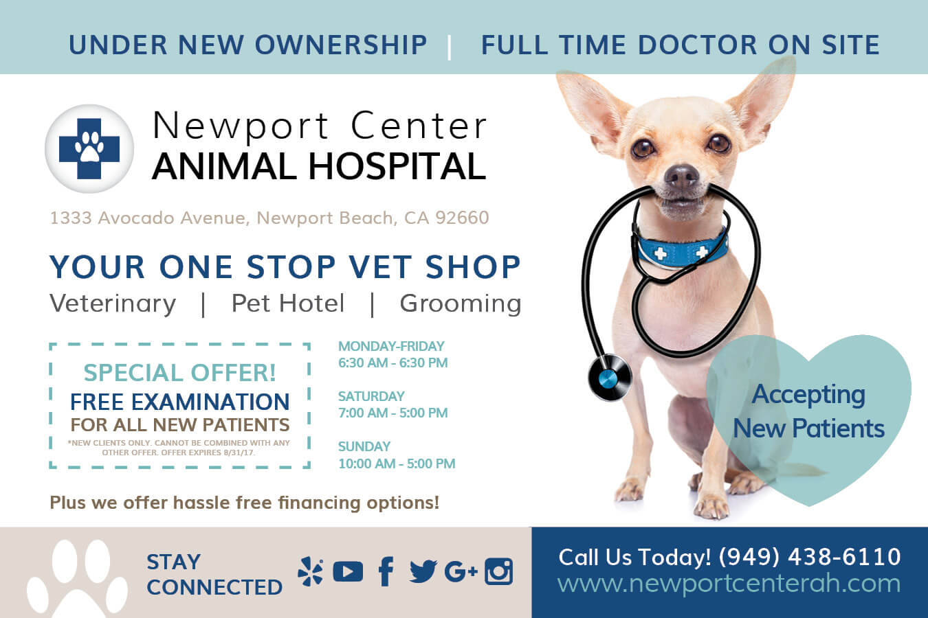 Newport Center Animal Hospital Specials Front   Animal Boarding, Veterinary Care and Hospital in Newport Beach